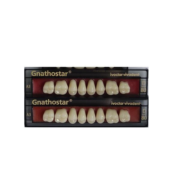 Dentes Gnathostar